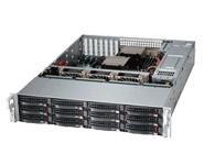 Supermicro Storage Server Platform SSG-6028R-E1CR12T