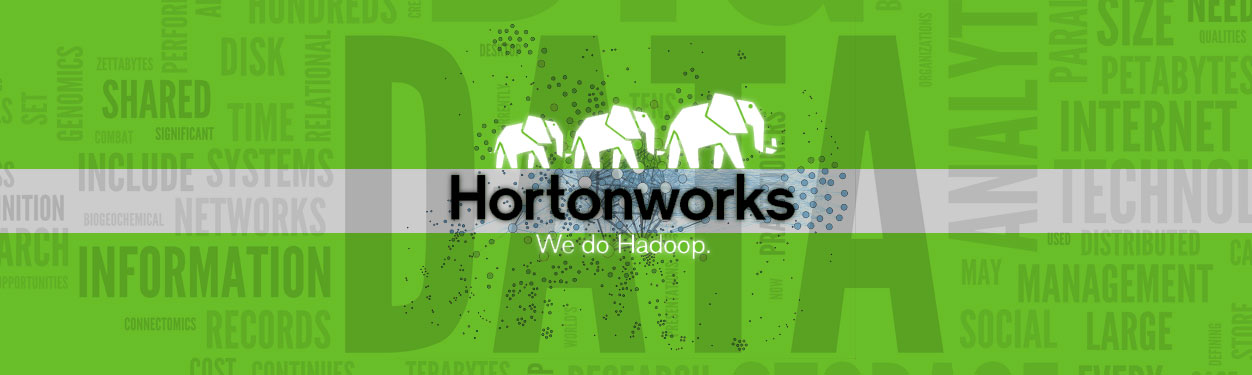 hortonworks Hadoop and BigData Solution Servers